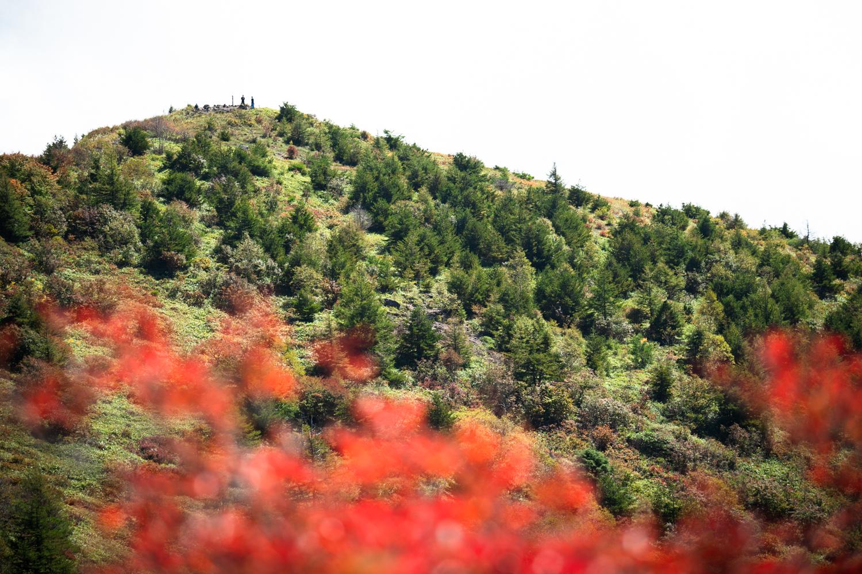 紅葉の山を安全第一で楽しみましょう!!